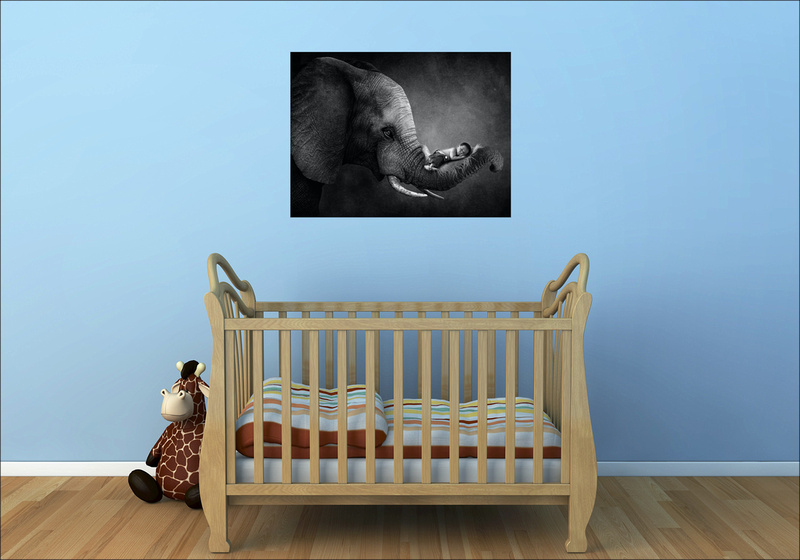 Newborn Photography Wall Art Collection